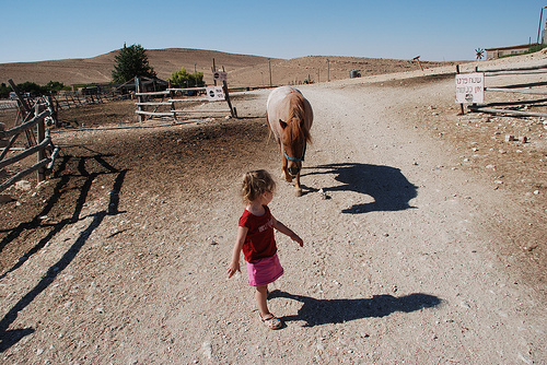 S_horse.jpg